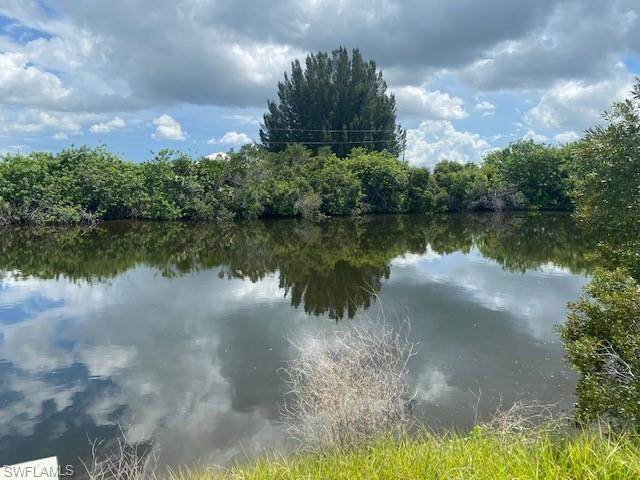 1213 NW 39th Avenue, Cape Coral, FL 33993 (MLS #221068087) :: Domain Realty