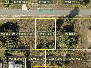 436 NW 5th Terrace, Cape Coral, FL 33993 (MLS #221068176) :: Realty One Group Connections