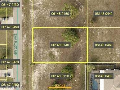 2603 NW 25th Avenue, Cape Coral, FL 33993 (MLS #221068658) :: Coastal Luxe Group Brokered by EXP