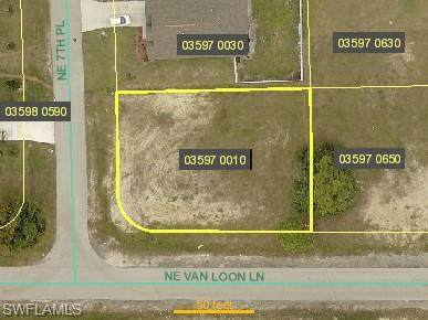101 NE 7TH Place, Cape Coral, FL 33909 (MLS #221068681) :: Tom Sells More SWFL   MVP Realty