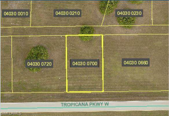3101 Tropicana Parkway W, Cape Coral, FL 33993 (MLS #221068698) :: Coastal Luxe Group Brokered by EXP