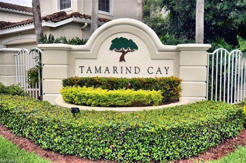 11271 Tamarind Cay Lane - Photo 1