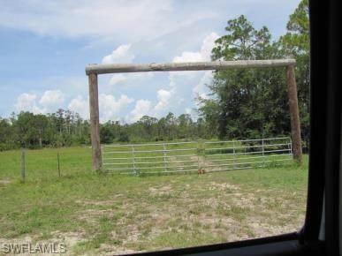 1861 Poinsettia Avenue, Lehigh Acres, FL 33972 (MLS #221072995) :: Medway Realty