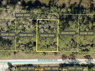578 Woodview Drive, Lehigh Acres, FL 33972 (MLS #221073050) :: Medway Realty