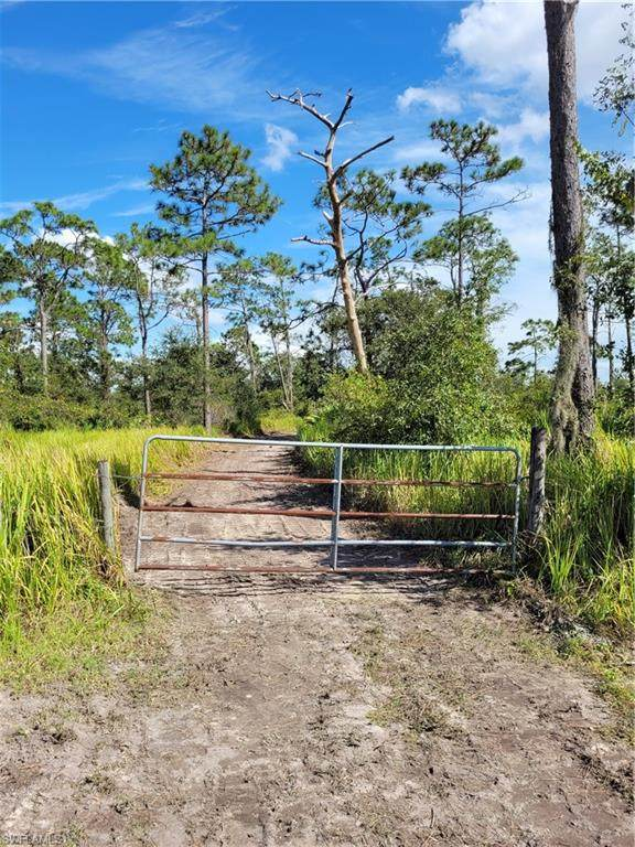 1282 Oak Avenue, Labelle, FL 33935 (MLS #221074665) :: Realty One Group Connections