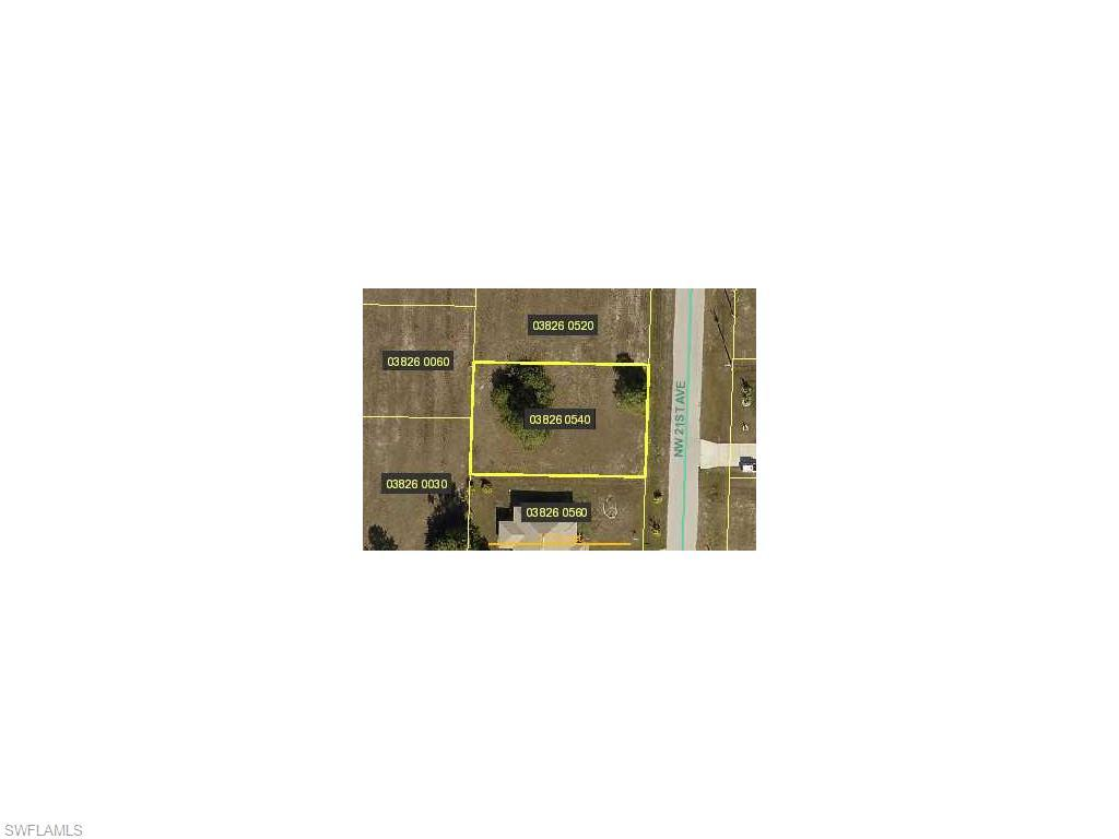 1108 NW 21st Ave, Cape Coral, FL 33993 (MLS #214028024) :: The New Home Spot, Inc.