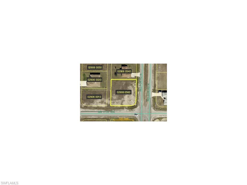 1114 Nelson Rd N, Cape Coral, FL 33993 (#214050967) :: Homes and Land Brokers, Inc