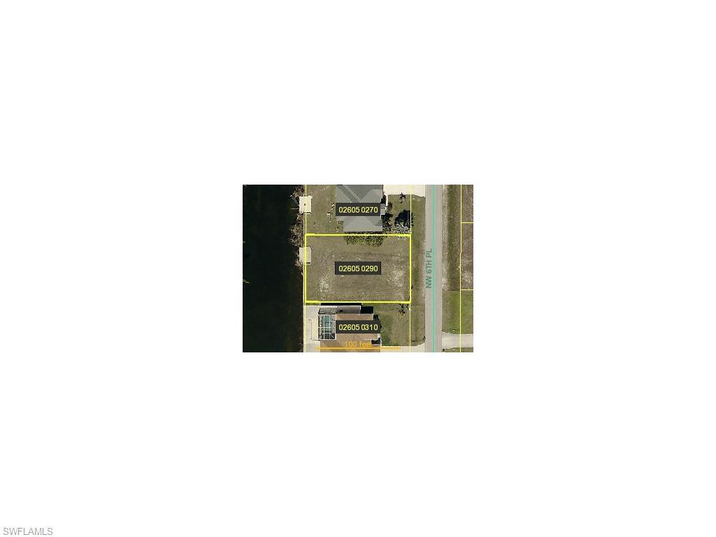 336 NW 6th Pl, Cape Coral, FL 33993 (#215003218) :: Homes and Land Brokers, Inc