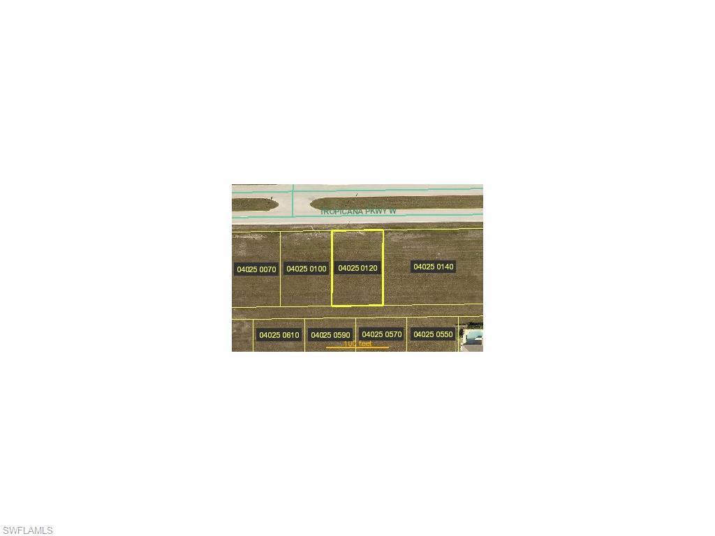 3024 Tropicana W, Cape Coral, FL 33993 (MLS #215006614) :: The New Home Spot, Inc.