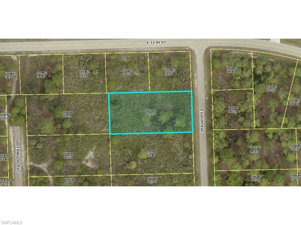 1123 E 8th Ave, Lehigh Acres, FL 33972 (#215040369) :: Homes and Land Brokers, Inc