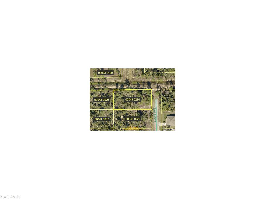 2321 Louis Ave, Alva, FL 33920 (MLS #215051151) :: The New Home Spot, Inc.