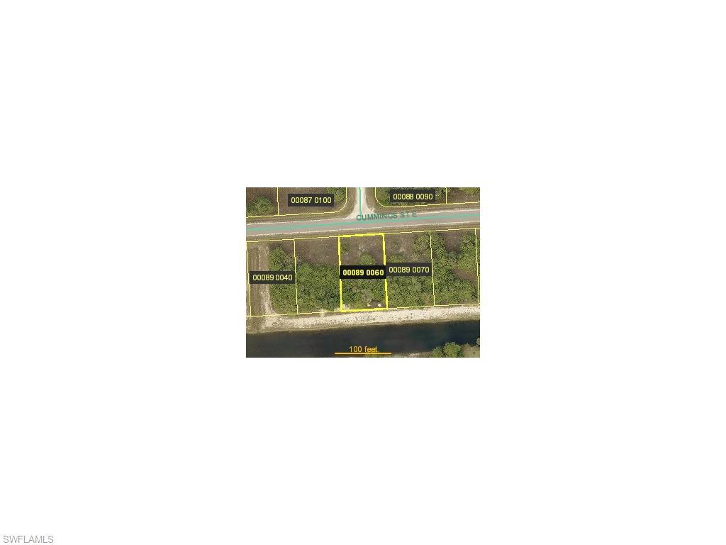 1224 Cummings St E, Lehigh Acres, FL 33974 (MLS #215067176) :: The New Home Spot, Inc.