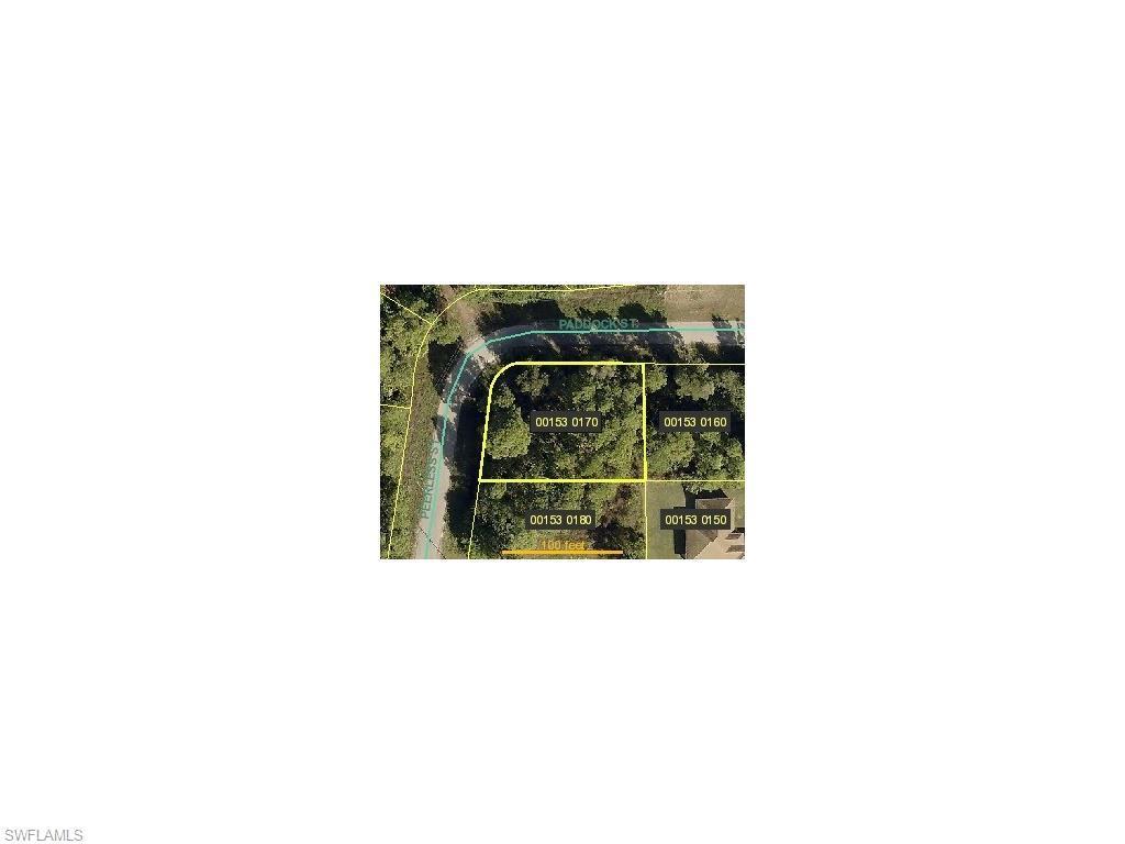 388 Peerless St, Lehigh Acres, FL 33974 (#216001203) :: Homes and Land Brokers, Inc