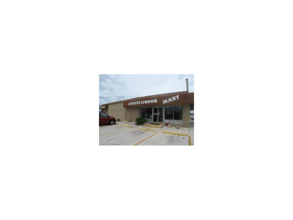 1517 SE 47th Ter, Cape Coral, FL 33904 (MLS #216007985) :: The New Home Spot, Inc.