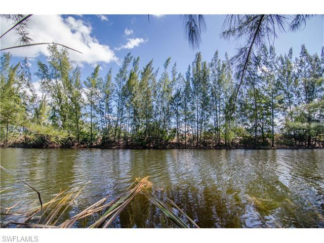 1119 SW 20th Ave, Cape Coral, FL 33991 (#216014602) :: Homes and Land Brokers, Inc
