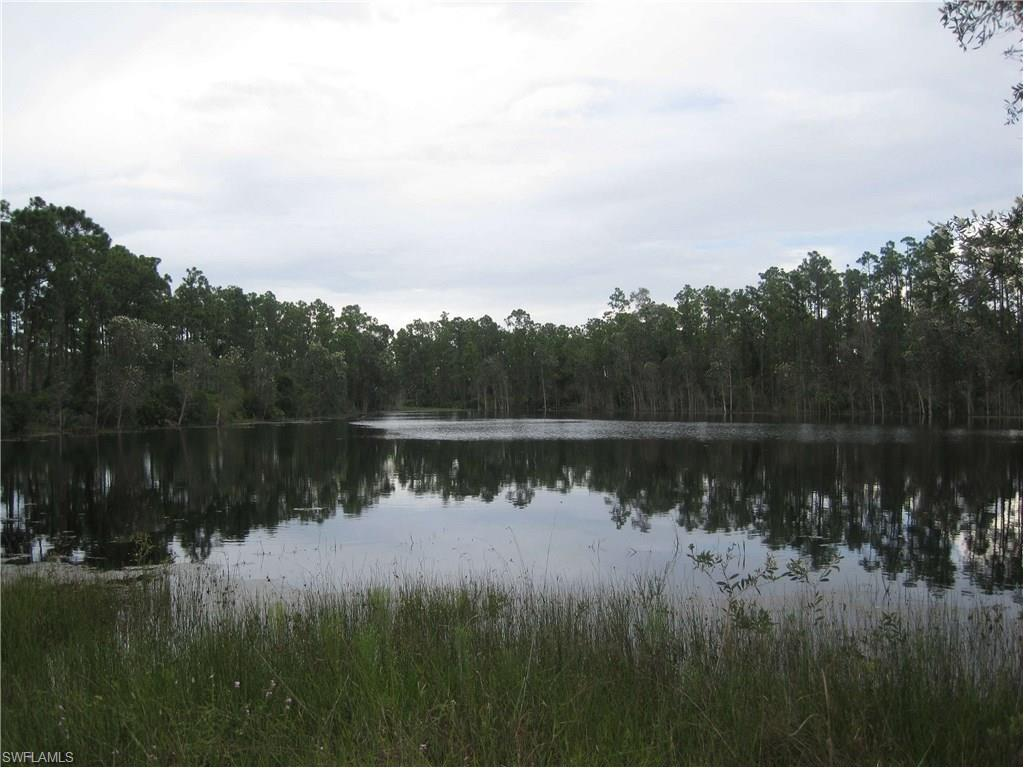 12129 Ludden Ct, Punta Gorda, FL 33955 (MLS #216016430) :: The New Home Spot, Inc.