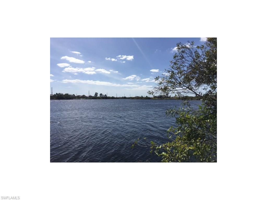 338 NW 25th Ter, Cape Coral, FL 33993 (MLS #216017901) :: The New Home Spot, Inc.