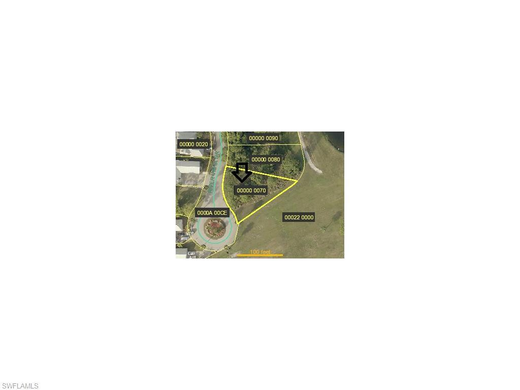 15320 River Vista Dr, North Fort Myers, FL 33917 (MLS #216019486) :: The New Home Spot, Inc.