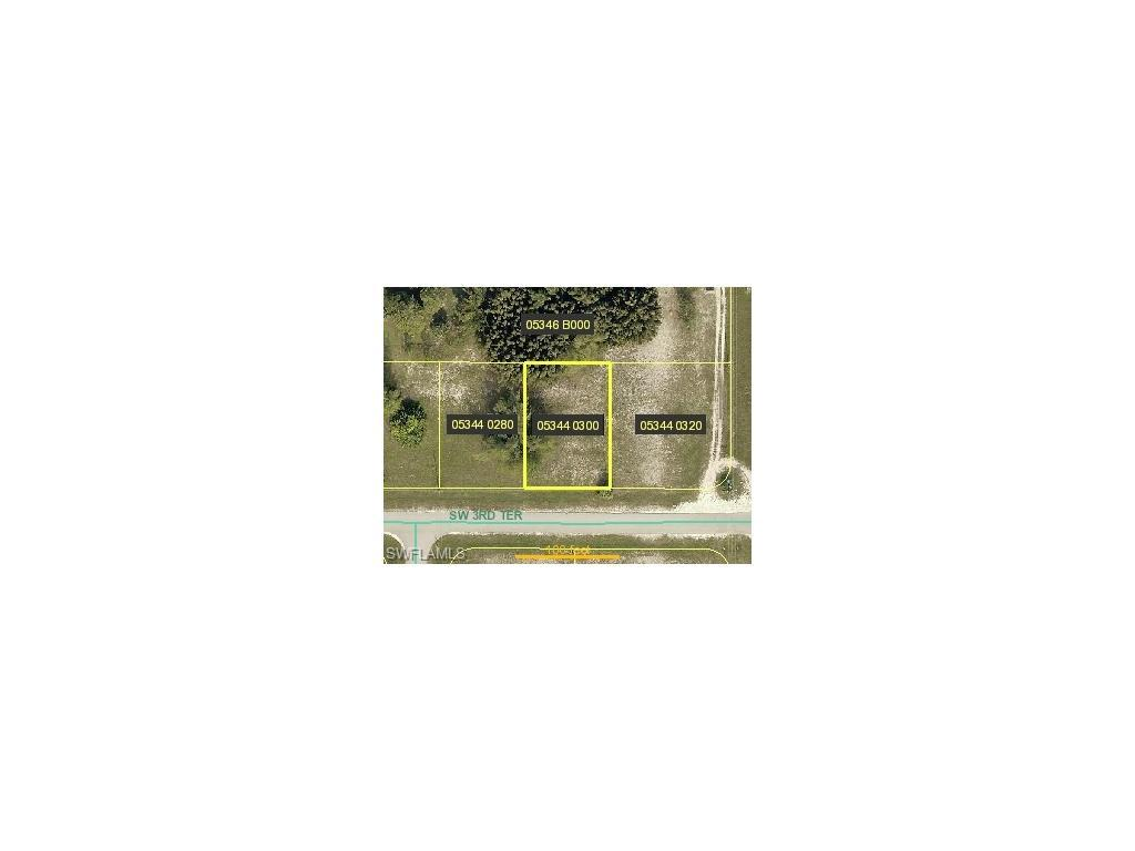 3205 SW 3rd Ter, Cape Coral, FL 33991 (MLS #216033532) :: The New Home Spot, Inc.