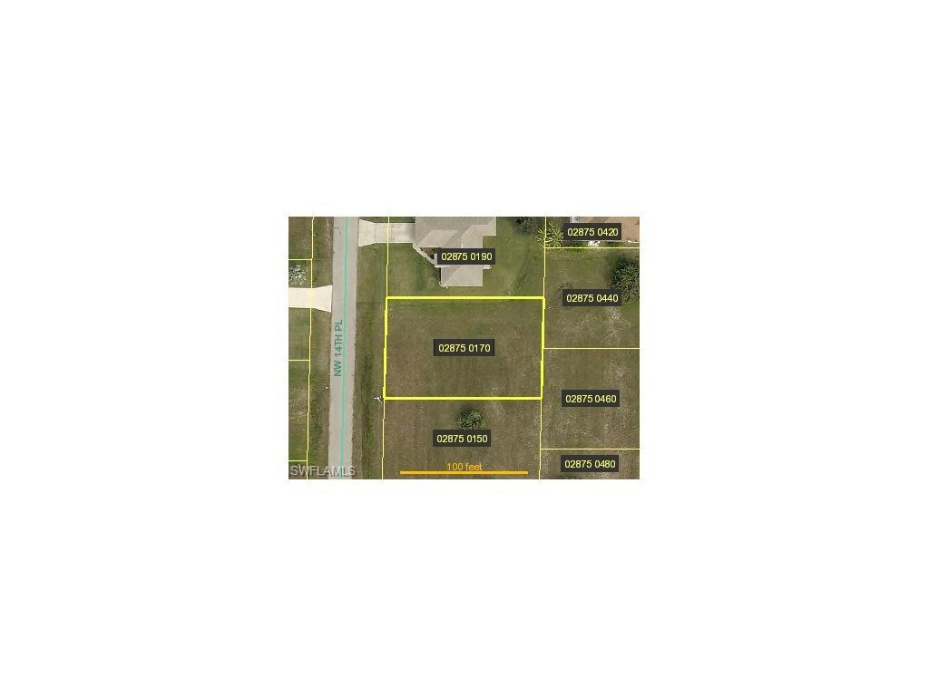 1347 NW 14th Pl, Cape Coral, FL 33993 (MLS #216044107) :: The New Home Spot, Inc.