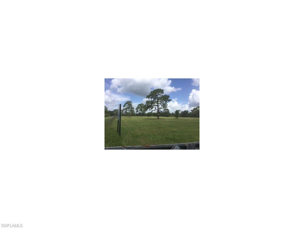19191 Parkinson Rd, Alva, FL 33920 (MLS #216044171) :: The New Home Spot, Inc.