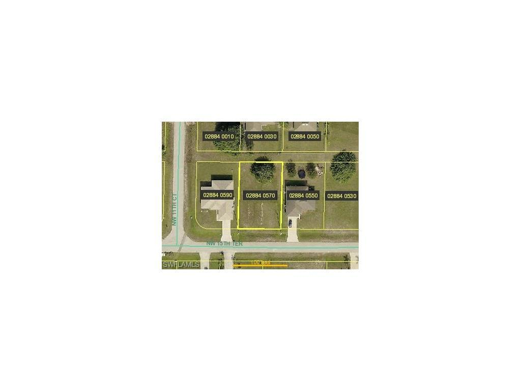 1125 NW 15th Ter, Cape Coral, FL 33993 (MLS #216045789) :: The New Home Spot, Inc.
