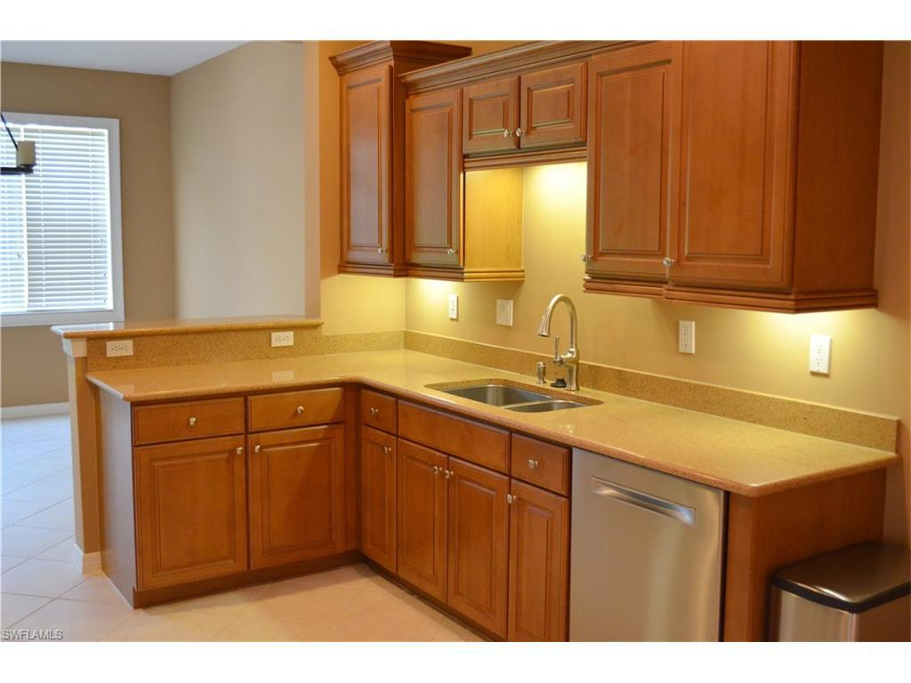 20456 Larino Loop, Estero, FL 33928 (MLS #216053907) :: The New Home Spot, Inc.