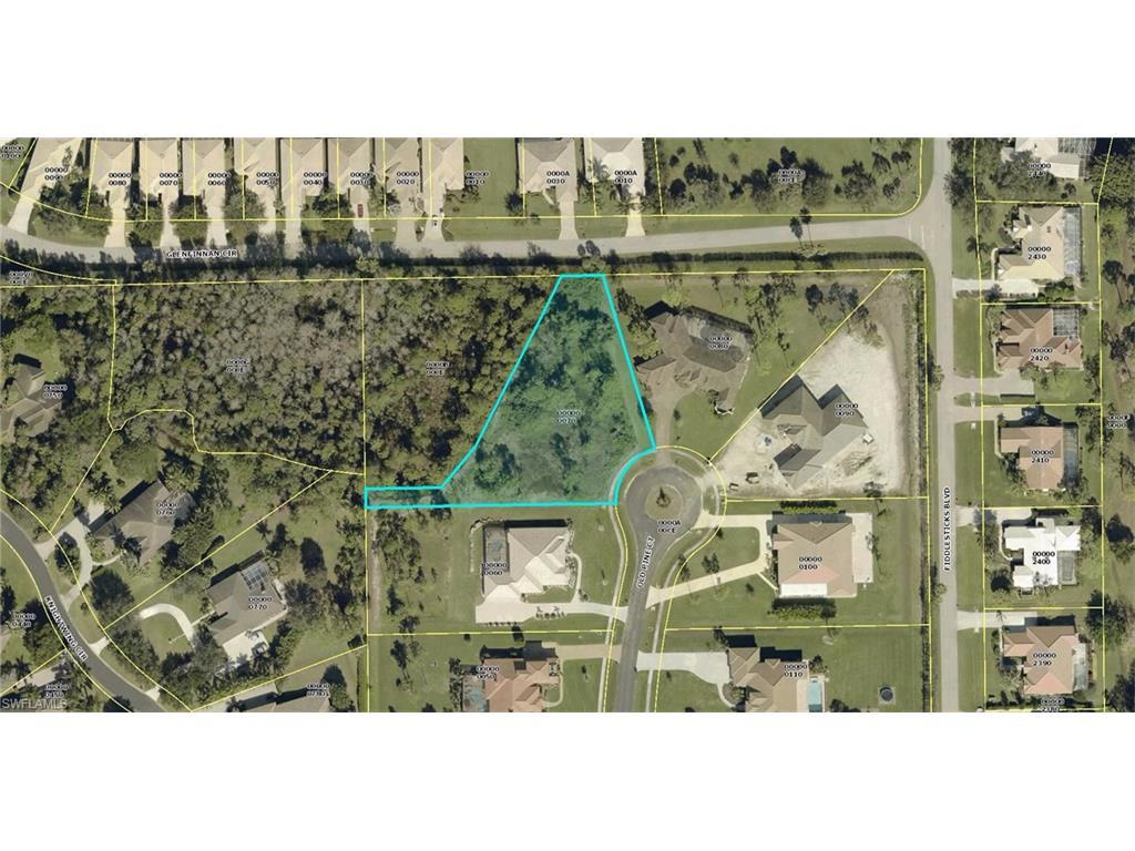 15356 Old Pine Ct, Fort Myers, FL 33912 (MLS #216054895) :: The New Home Spot, Inc.