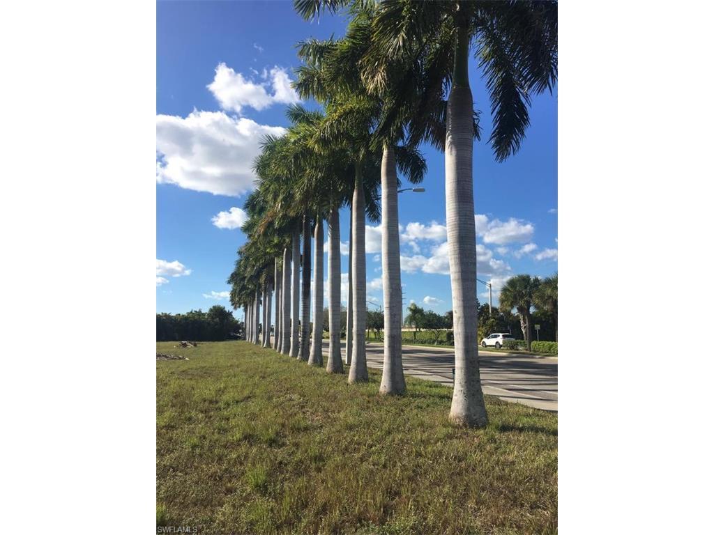306 Cape Coral Pky W, Cape Coral, FL 33914 (MLS #216058594) :: The New Home Spot, Inc.
