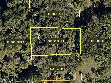 14376 Cemetery Rd, Fort Myers, FL 33905 (MLS #218004008) :: RE/MAX Realty Group
