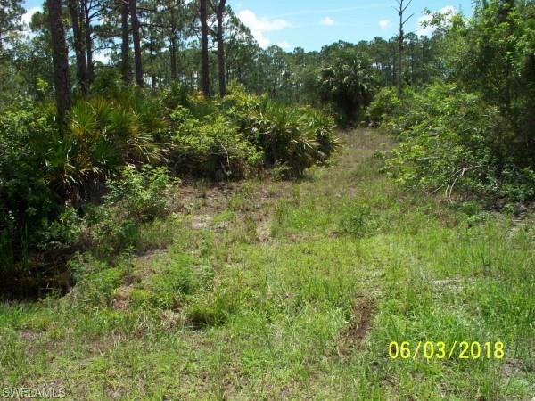5205 Pioneer 23rd St, Clewiston, FL 33440 (MLS #218037340) :: Clausen Properties, Inc.