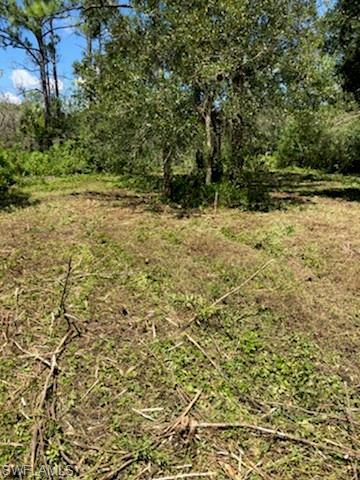 27938 Nairn Ln, Labelle, FL 33935 (MLS #218056158) :: RE/MAX Realty Team