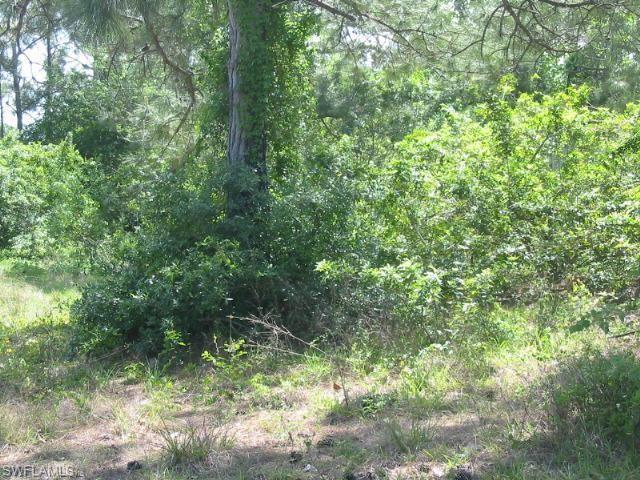 8385 Marx Dr, North Fort Myers, FL 33917 (MLS #219011466) :: RE/MAX DREAM