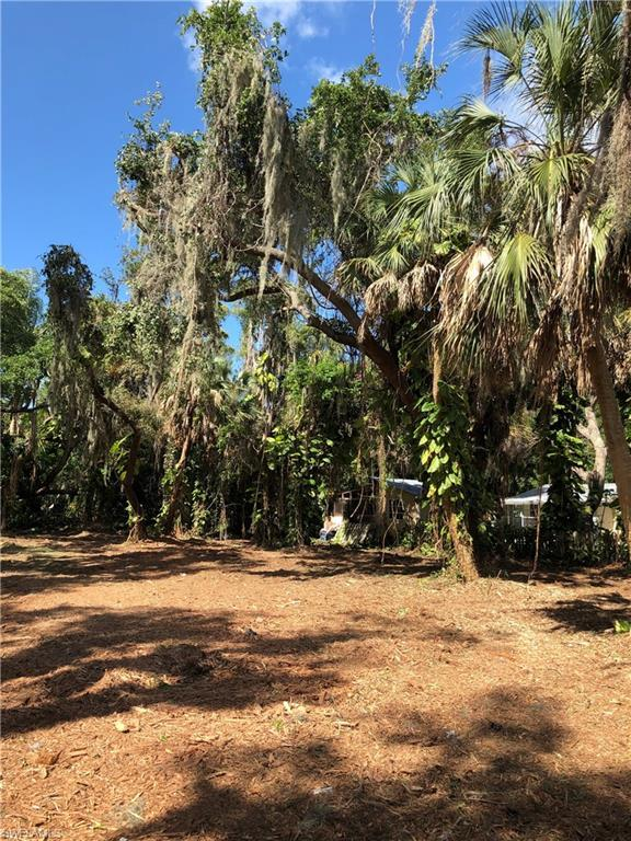 Fifth Ave, Other, FL 33956 (MLS #219039909) :: Sand Dollar Group