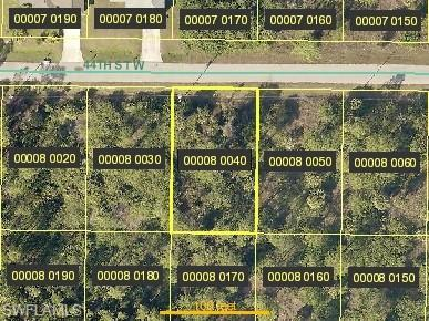 3313 44th St W, Lehigh Acres, FL 33971 (MLS #219043028) :: RE/MAX Realty Group