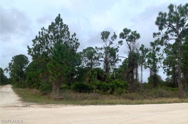 7726 20th Pl, Labelle, FL 33935 (MLS #220000931) :: RE/MAX Realty Team