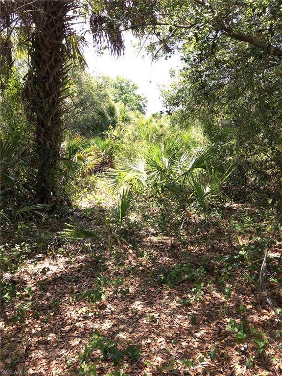 560 S Hacienda Street, Clewiston, FL 33440 (MLS #221030052) :: Wentworth Realty Group