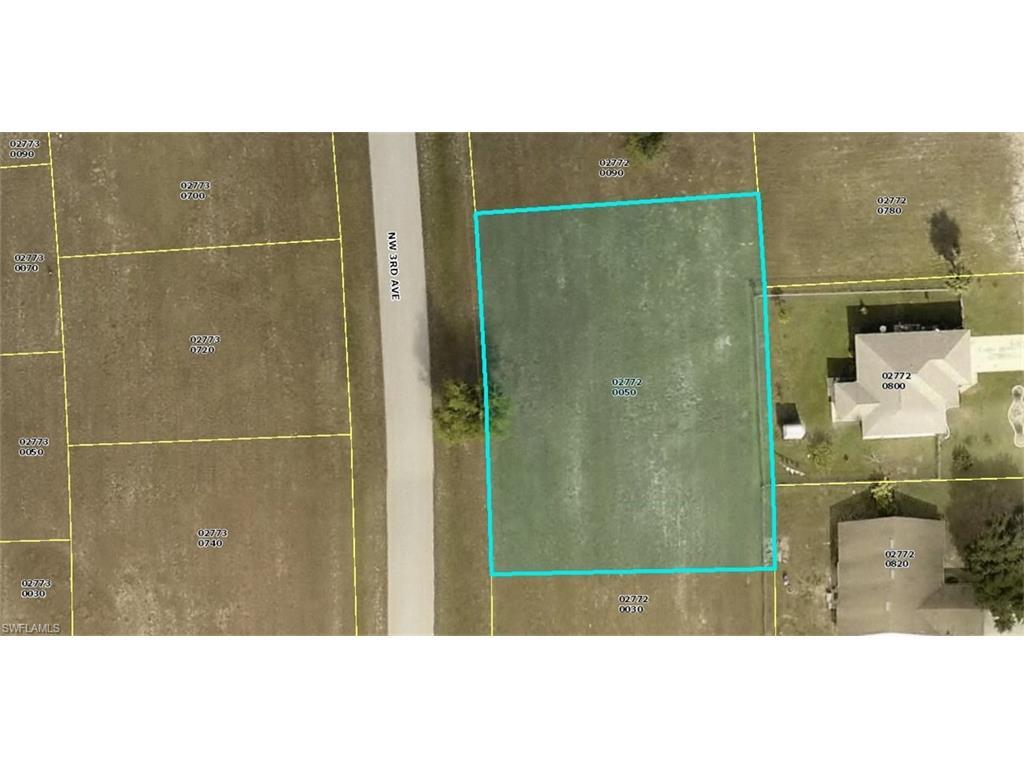 3025 NW 3rd Ave, Cape Coral, FL 33993 (MLS #216012151) :: The New Home Spot, Inc.