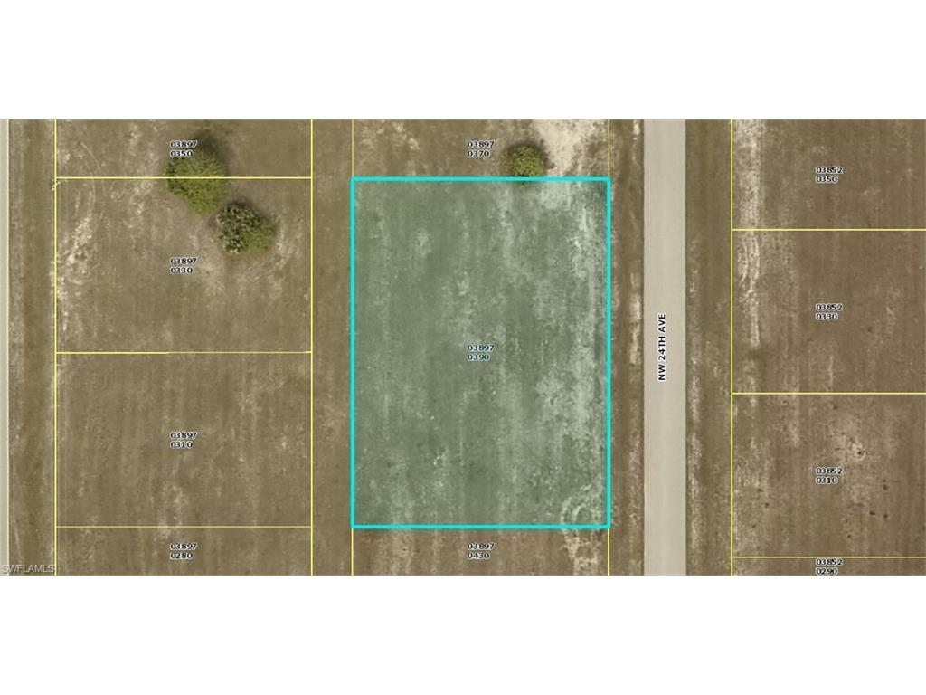 2010 NW 24th Ter, Cape Coral, FL 33993 (MLS #216012193) :: The New Home Spot, Inc.