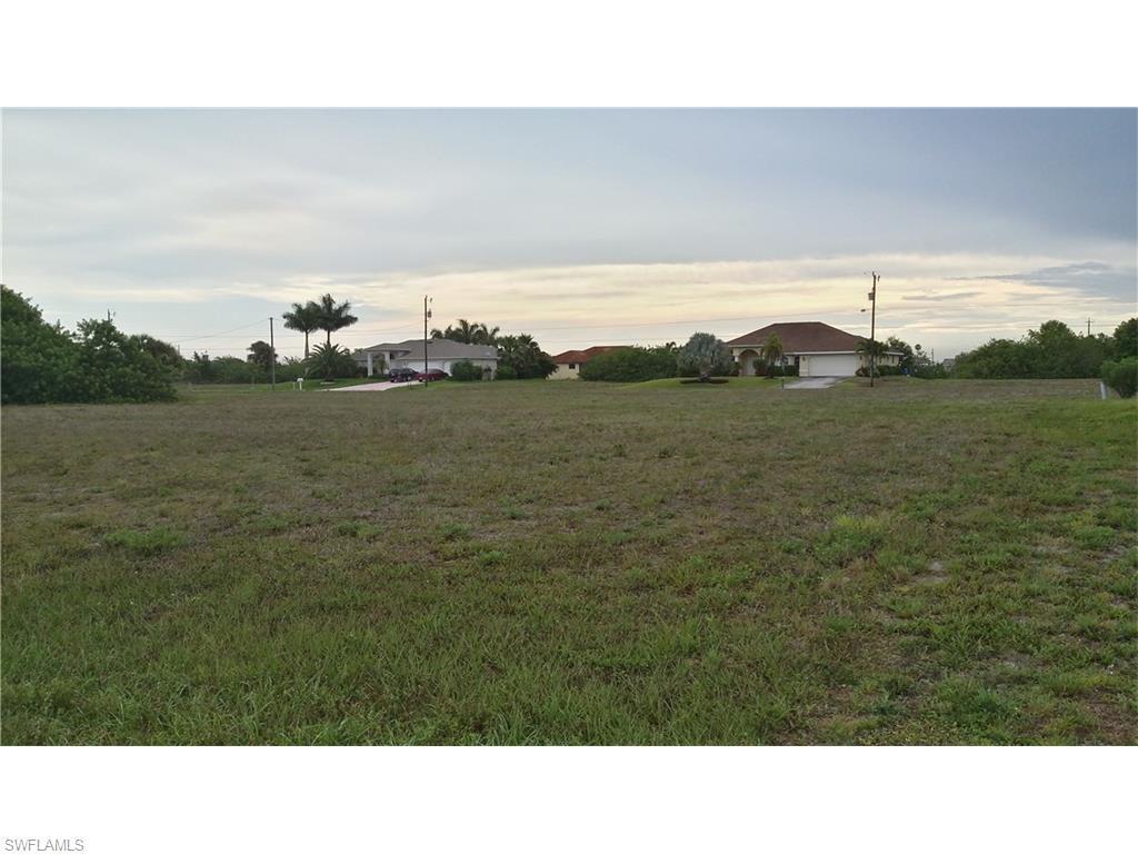 1313 NE 5th Ave, Cape Coral, FL 33909 (MLS #216026514) :: The New Home Spot, Inc.