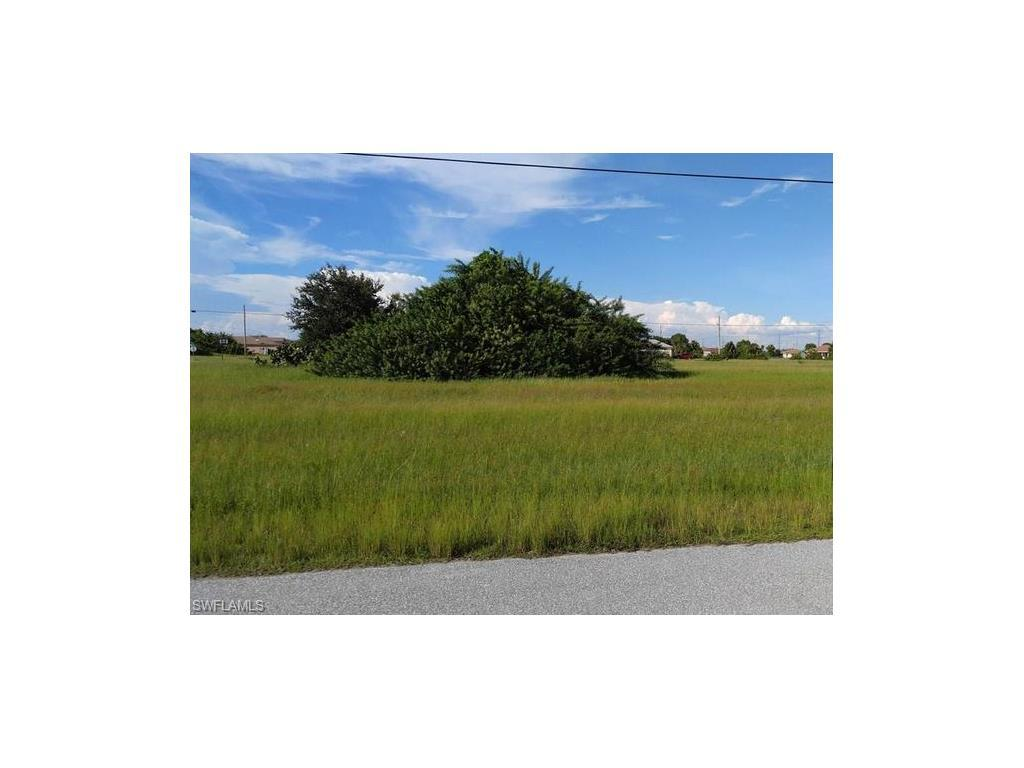 2507 NW 3rd Ter, Cape Coral, FL 33993 (MLS #216045443) :: The New Home Spot, Inc.