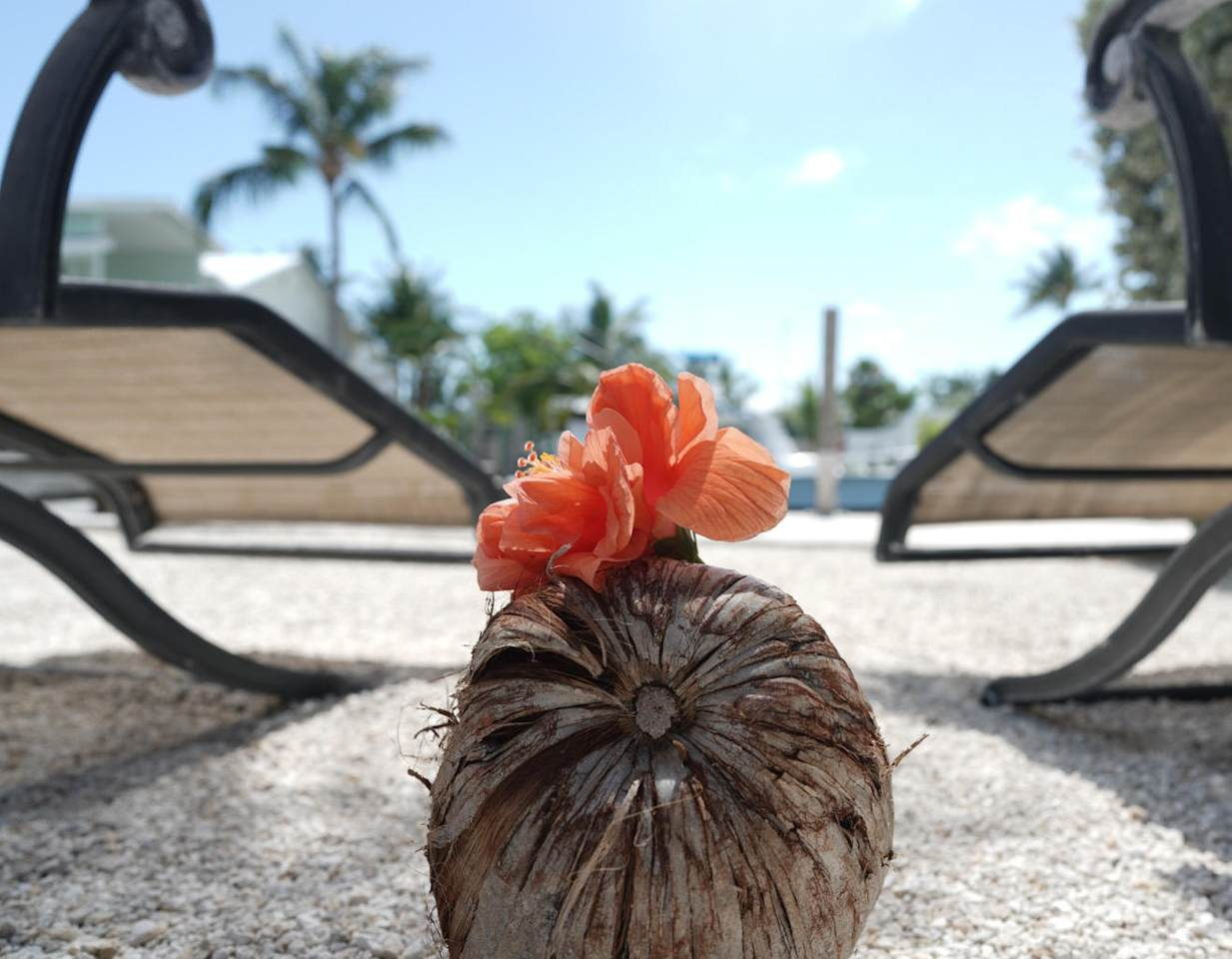 315 Ocean Drive - Photo 1
