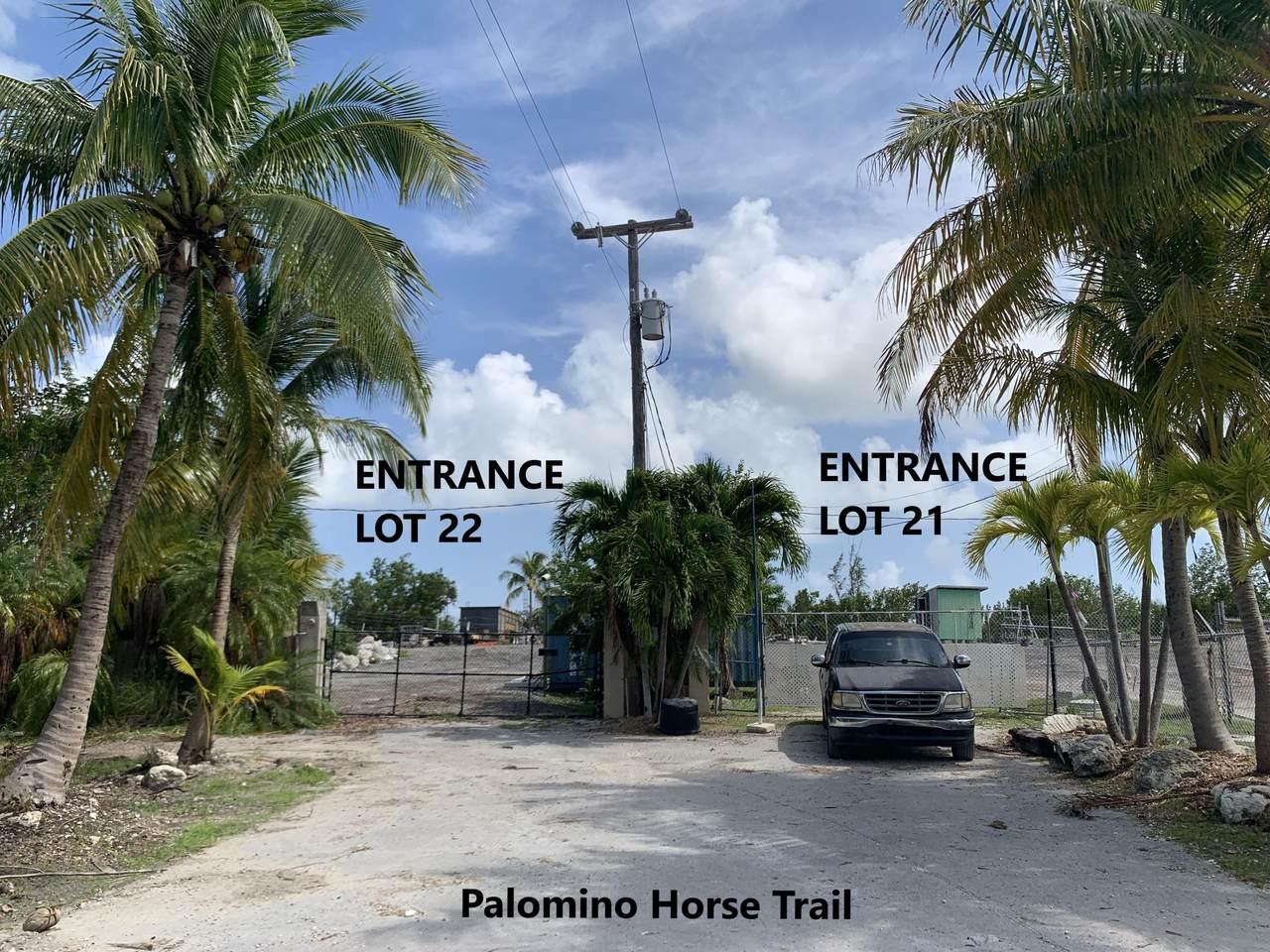 260 & 261 Palomino Horse Trail - Photo 1