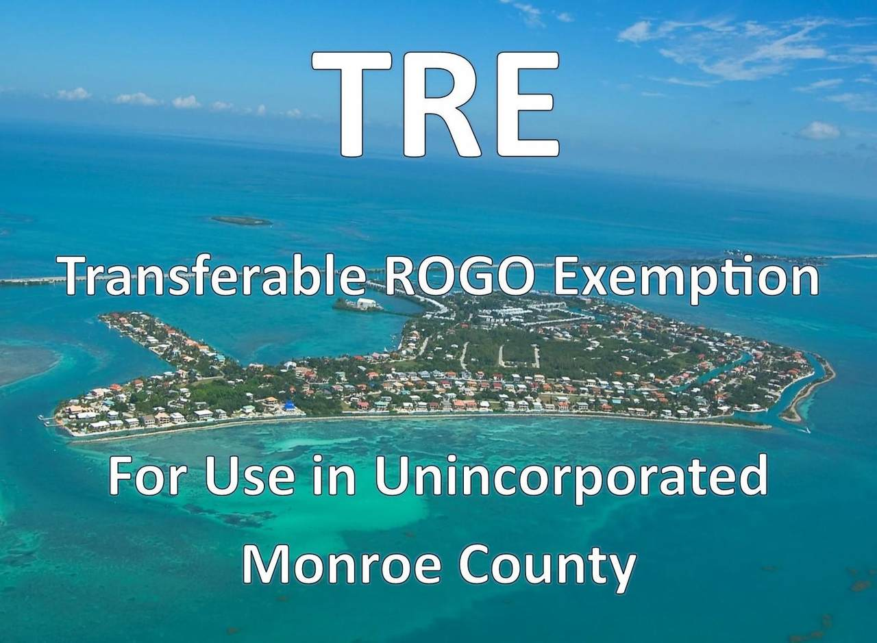 1 Transferable Rogo Exemption - Photo 1