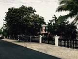 27313 Dominica Lane - Photo 19