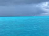 648 Caribbean Drive - Photo 41