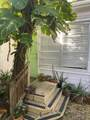 1010 Grinnell Street - Photo 2