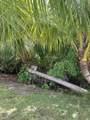 515 Palm Drive - Photo 16
