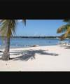 1 Coconut Drive - Photo 5