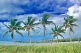 213 Sombrero Beach Road - Photo 40